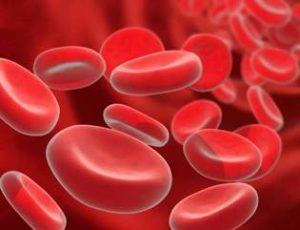 К чему ведет снижение гемоглобина, и как его повысить в домашних условиях?