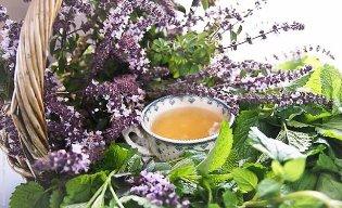 Травяные чаи и ванны для спокойного сна: какие ингредиенты выбрать
