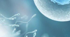 как увеличить подвижность сперматозоидов
