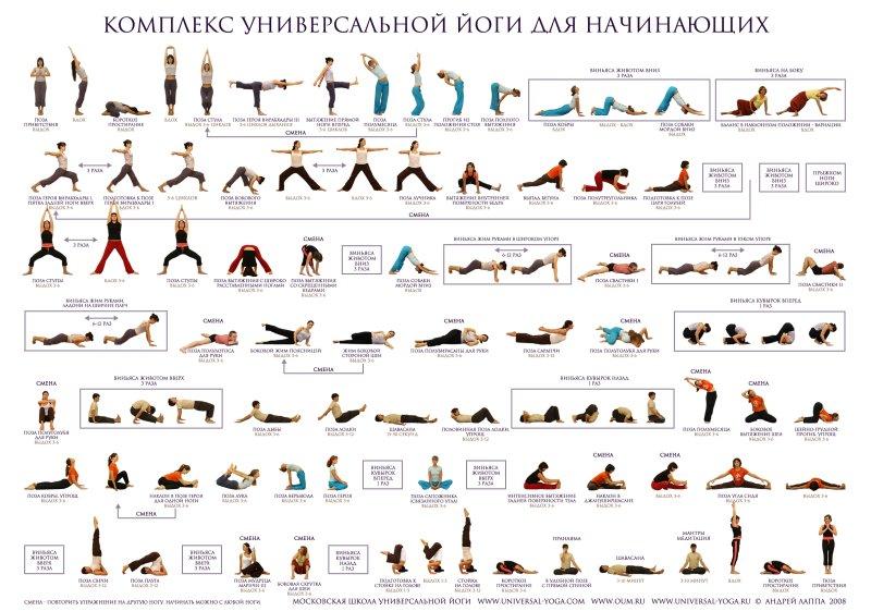 Комплекс упражнений для начинающих