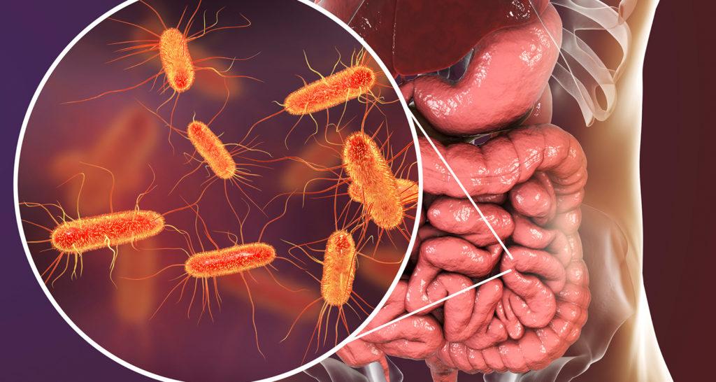 Дисбактериоз: причины, проявления, профилактика