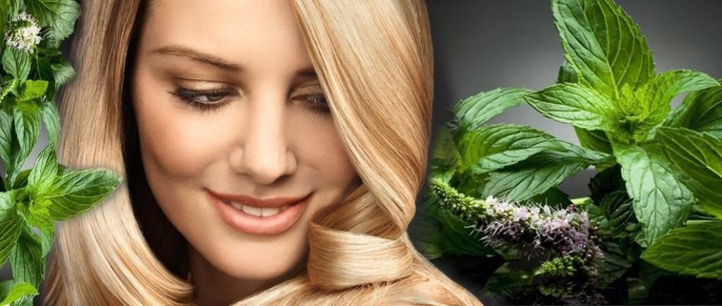 Хмель в косметологии для волос и кожи лица